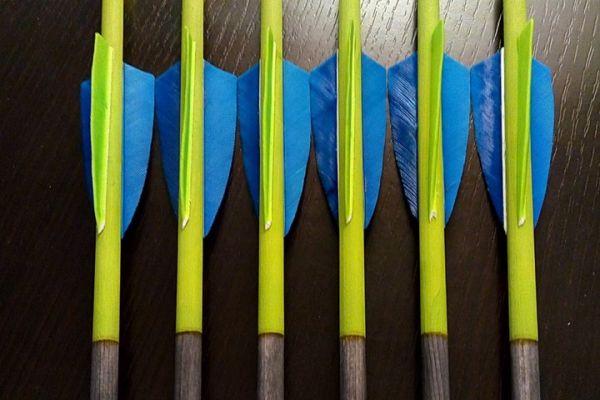 arrow-286EE5FCFB-483A-A201-FDC1-45995C407C16.jpg